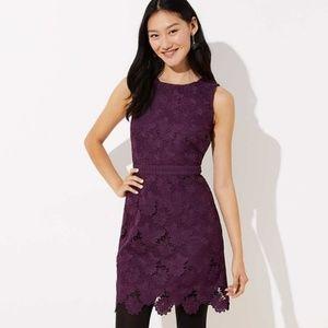 Loft scalloped lace dress